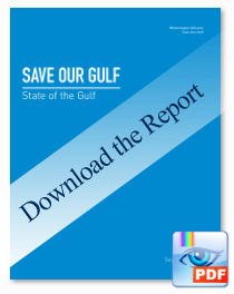 Download the State of Our Gulf Report - (4MB PDF)