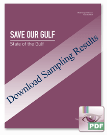 Download the State of Our Gulf Sampling Results - (100k PDF)