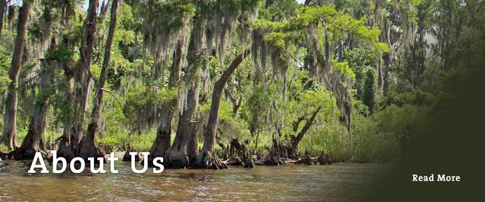 Lower Mississippi Riverkeeper - Waterkeeper Alliance Member
